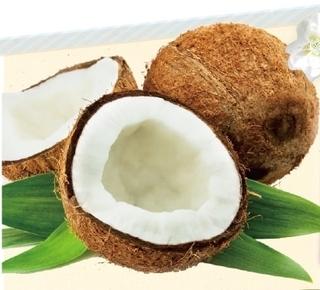 ココナッツオイルサプリ.jpg